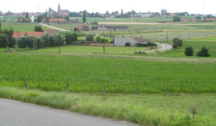 geluveld-landschap